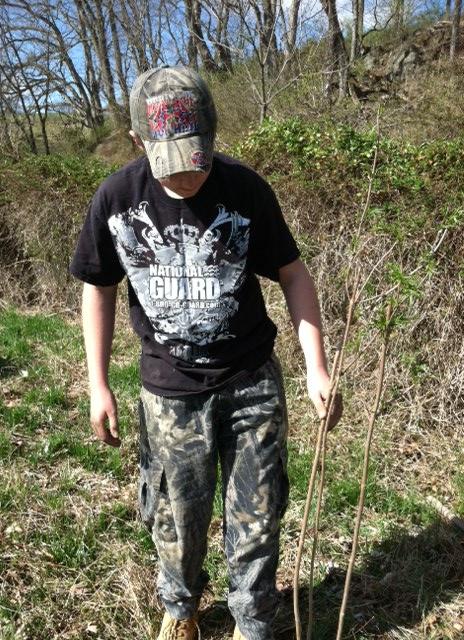 BSA planting trees 1 4-13-13